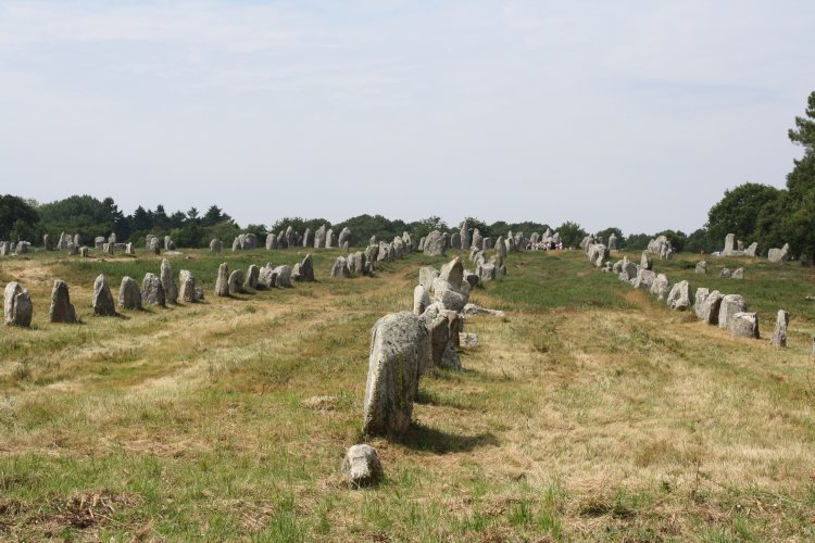 A section of the #Carnac Alignments in north-west #France. C. 5,000-3,000 BCE. #History   More info:  http://www. ancient.eu/image/2899/  &nbsp;  <br>http://pic.twitter.com/SuqPg0gWyJ