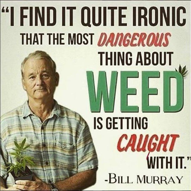 Image result for hashtags related to weed