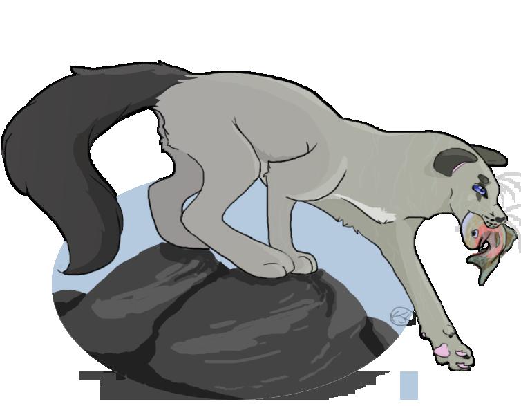 Request for Moonwing #warriorcatocs #warriorcats #riverclan #erinhunter I'm not sure if im happy with this but it's okay #thegeneralbaconart