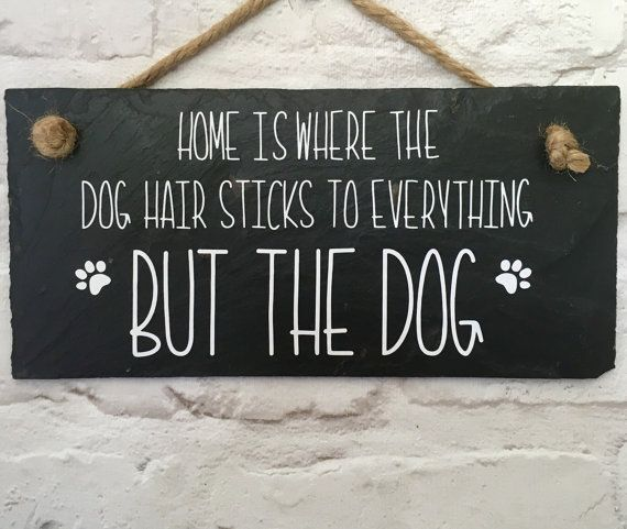 @PoshPuppy #dogs #dogsoftwitter #dogsayings #dogquotes @PoshPuppy