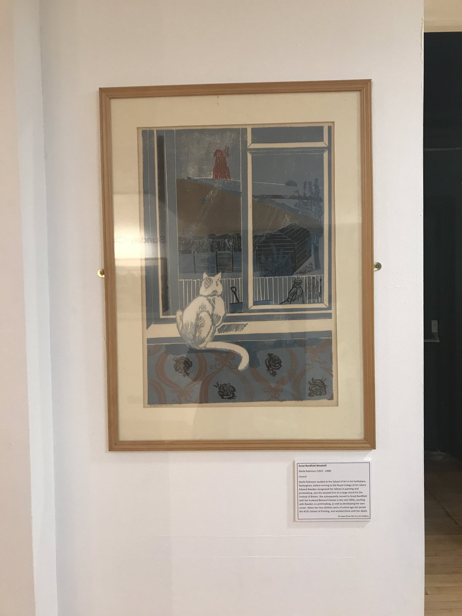 #MewseumMonday spotted this kitty staring out of the window @museumbraintree during a recent visit