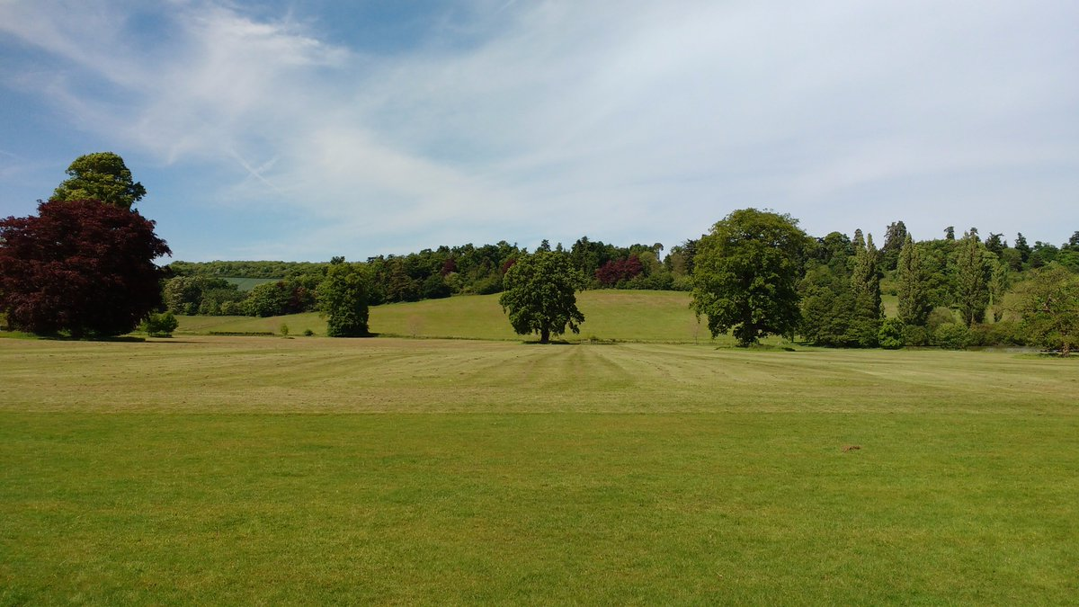 Glorious day here at #loseley - #view from the house across the parkland #englishsummer #surreyhills #cleanair