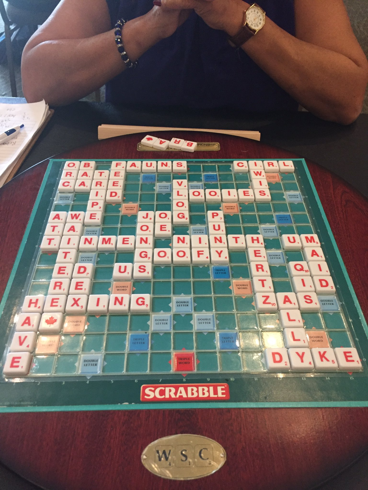 #niagarascrabble2017 R19: Yvonne Lobo 414 Andy Saunders 376 #scrabble https://t.co/OL7v6SeBbZ
