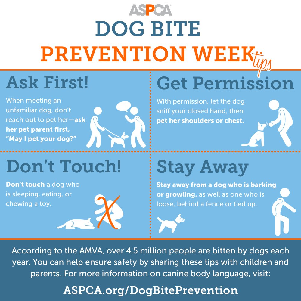 ASPCA Prevention Week - Triple R Dogs Pet Service