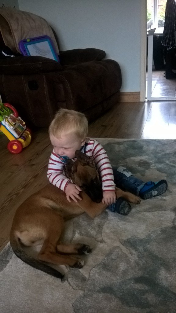 After a few days at @NPDT2017 - it was nice to get back to see the mini hooman. I think he missed me!!🐾👶