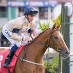 Clenymistra wins for @HambletonRacing @omeararacing at @Redcarracing under a great ride from @DannyTudhope #welldone