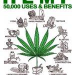 #hemp uses and benefits #hempoil #cbdoil #cannabisoil https://t.co/1aczGImHn4