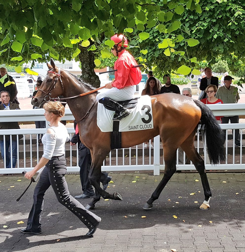 #Terre bids to defend family honour in Prix Cléopatre. Trial for Prix de Diane, which was won by full sister #Trêve in 2013 <br>http://pic.twitter.com/8fjnEROZIR
