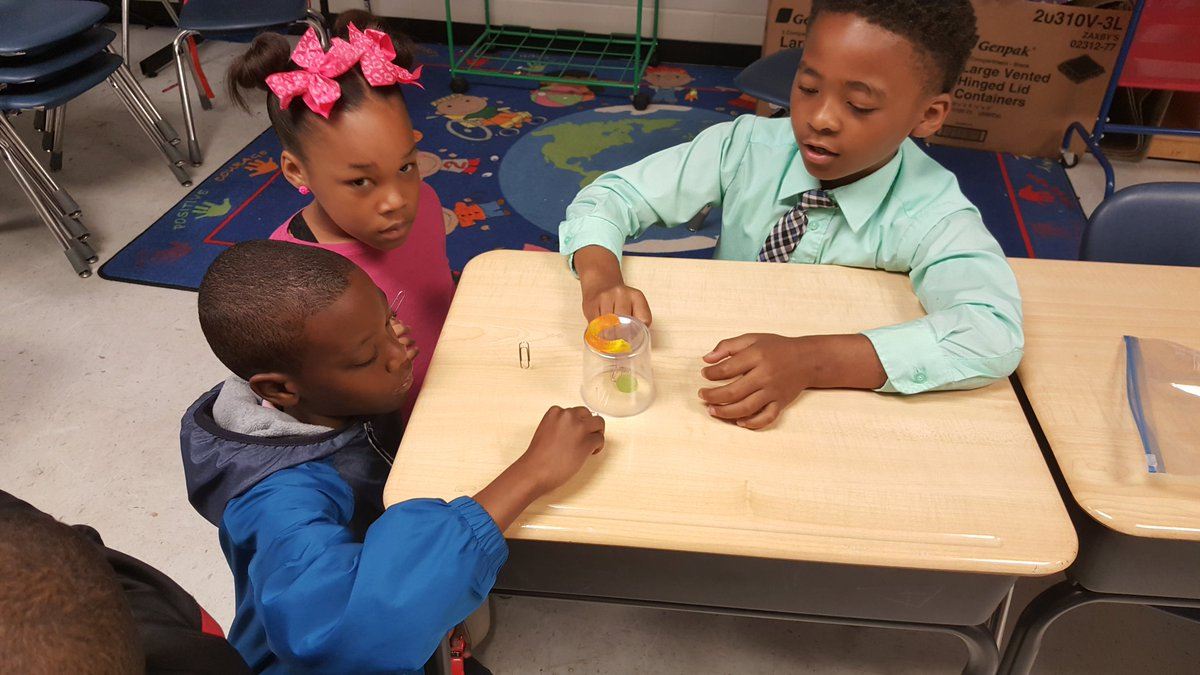 Last STEM lesson of the year.  We helped save Freddy the worm from drowning!!! #NCSSBETHEBEST #mykiddosarebetterthanyours #2ndrocks #LIVEOAK <br>http://pic.twitter.com/rz7WzfrMQi &ndash; à Live Oak Elementry