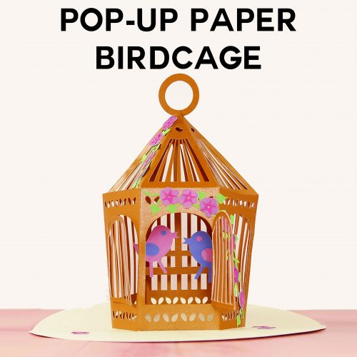 Pop-Up Birdcage