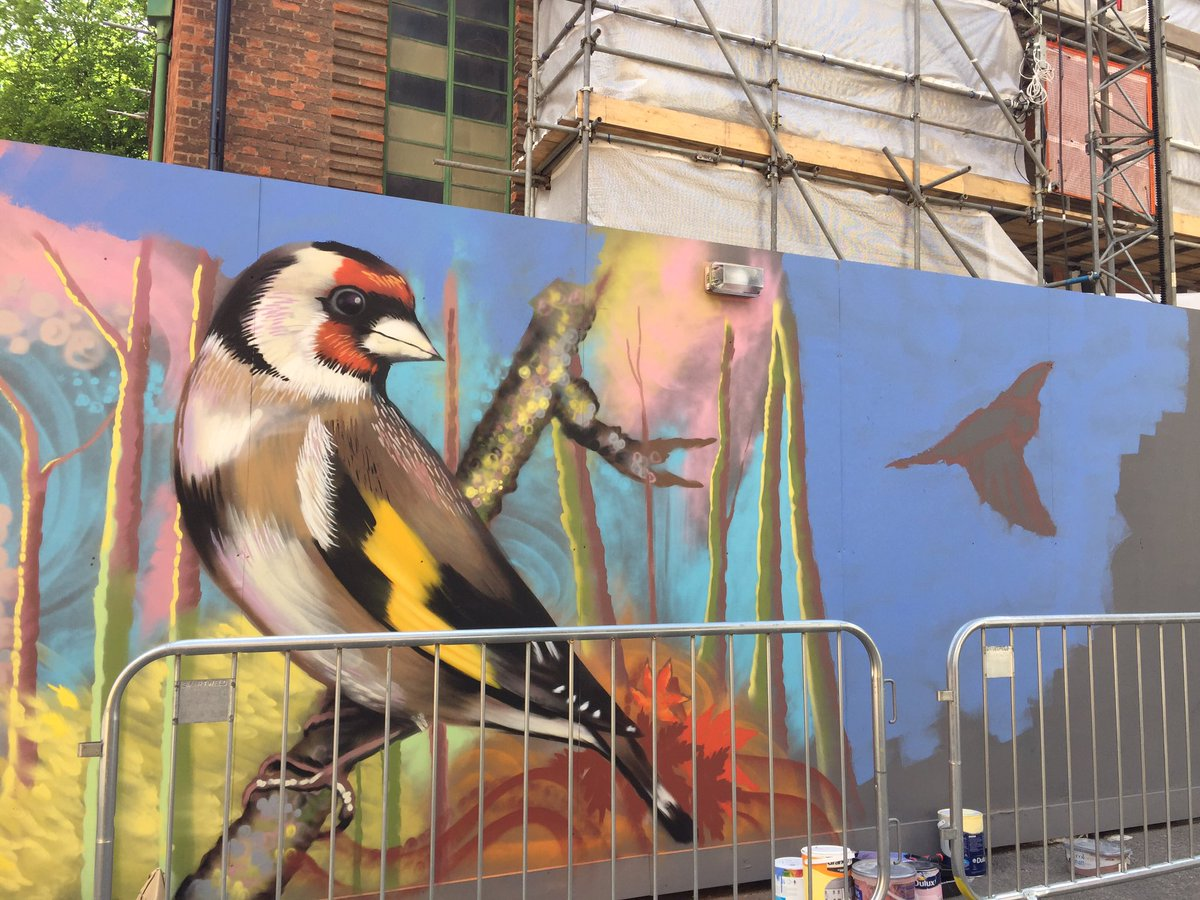 Street art festival happening in Leicester. Giant goldfinch cheered me up immensely yesterday. #loveleicester https://t.co/7IRciRNADr