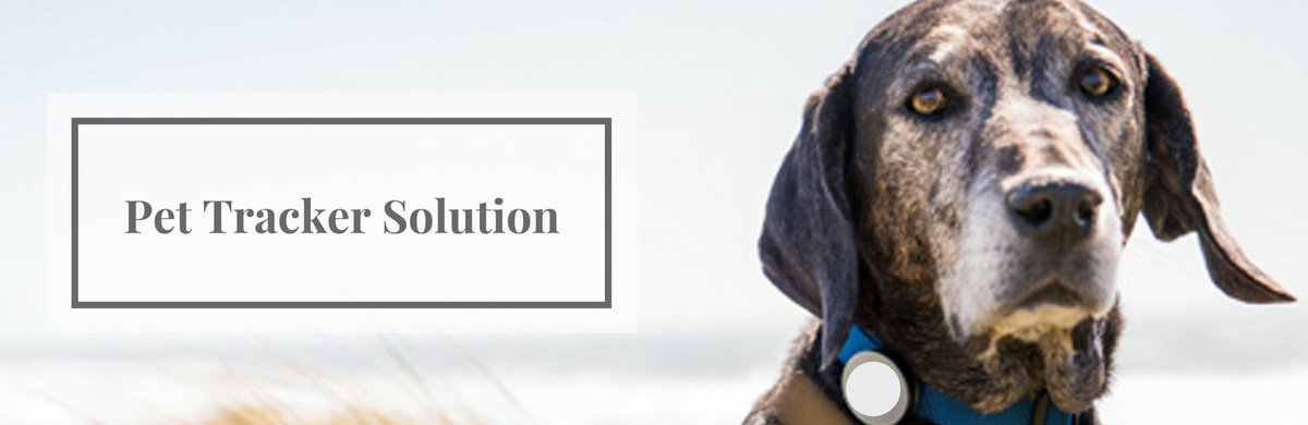 The #GPS tracker on the Pets' collar help owners to track their pets. . Contact for #location based solution -  http:// bit.ly/2px62tV  &nbsp;  <br>http://pic.twitter.com/LVfNjh8deV