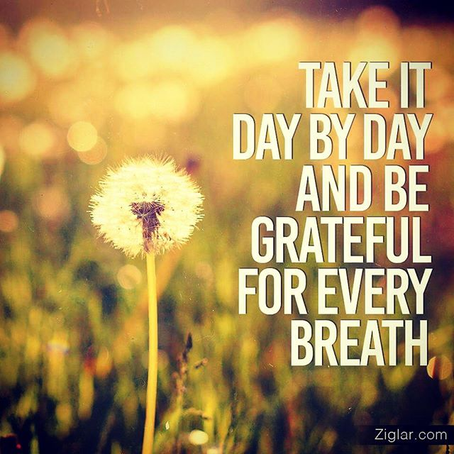 I am grateful for today - it is a blessing denied to so many #gratitude #manifestation #wednesdaywisdom #MotivationalQuotes #createchange<br>http://pic.twitter.com/TbqnNiq4AC