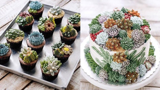 Astonishingly lifelike succulent cakes are here to blow your mind https://t.co/LxCJo5fg2U
