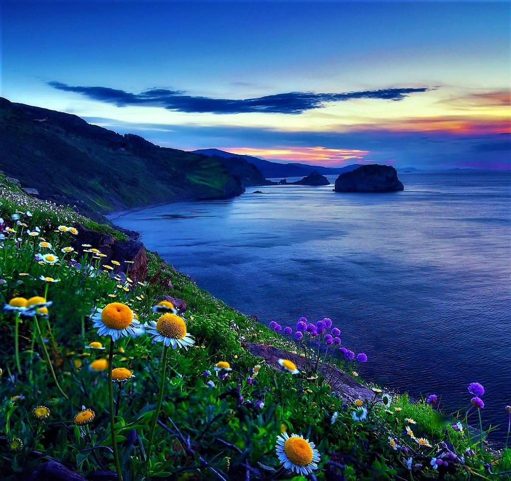 Good evening Have a relax peacefully on evening all #sunset #amazing #views #landscape<br>http://pic.twitter.com/fabONKlO6y