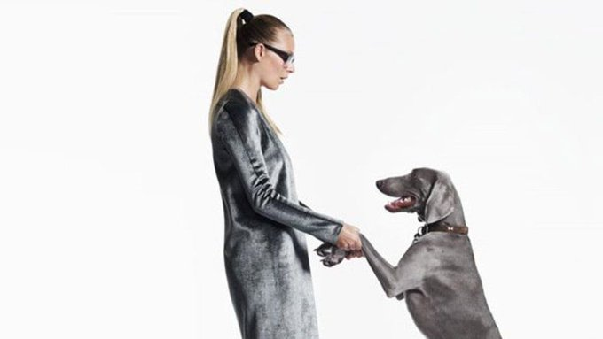 Do you chat to your pet? Science says it proves something incredible about you https://t.co/Oj1fw9r7NJ