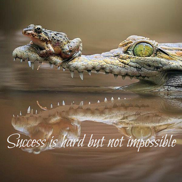success is possible #courage #InspireThemRetweet #Startup #Entrepreneur #Success #MakeYourOwnLane #defstar5 #mpgvip #WednesdayMotivation <br>http://pic.twitter.com/k7aVpMEo2Z