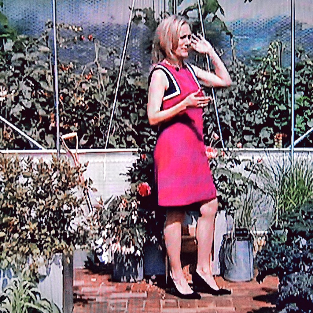 A few more of stylish Sophie at the #Chelseaflowershow #sophieraworth #style #fashion #legs #heels #blonde #pinkdress #smile #tvpresenter<br>http://pic.twitter.com/LSAQy0luRV