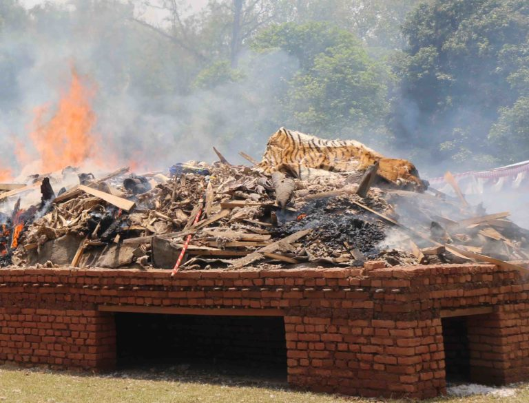 #Nepal publicly burns more than 4,000 confiscated wildlife parts to show zero tolerance for illegal wildlife trade!  http:// bit.ly/2rTT3To  &nbsp;   <br>http://pic.twitter.com/7uo7fvCIQj