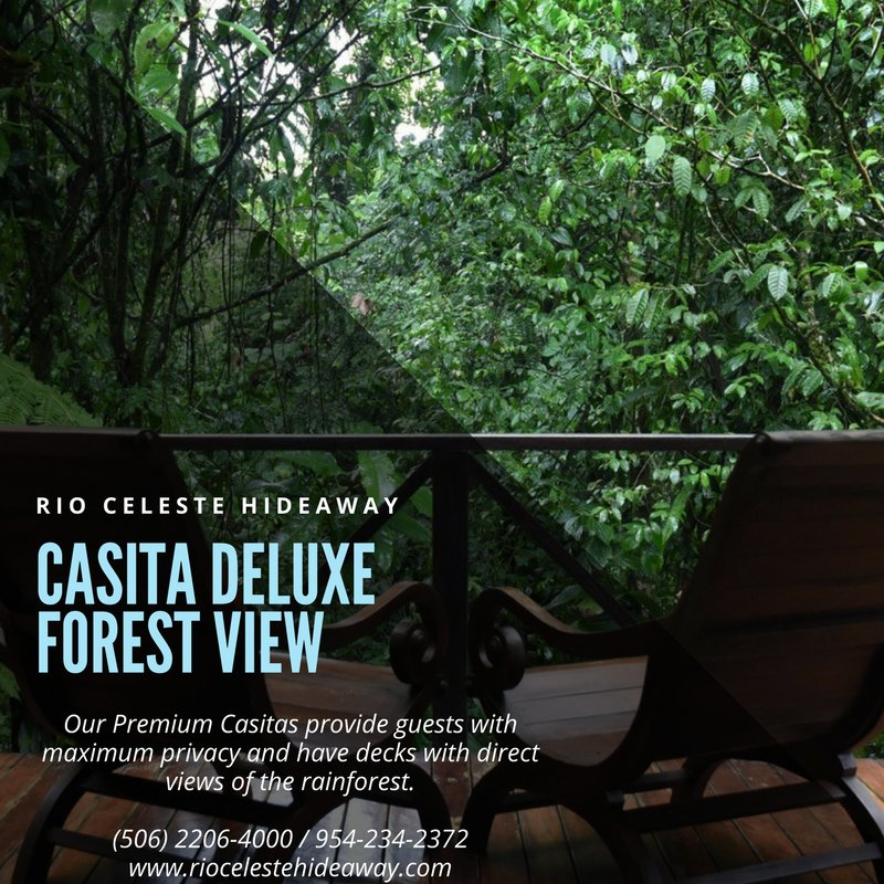 Nature has created a place right out of a fairytale in Rio Celeste.  http:// bit.ly/RCHRooms  &nbsp;   #forests #Vacances #vacation #travelblogger<br>http://pic.twitter.com/rXVTupHUwj