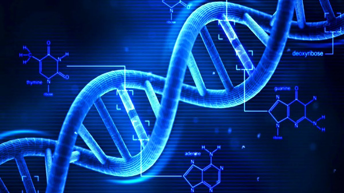 We Could Be Storing #Data in Our #DNA in the Next 10 Years.   http:// bit.ly/2qQsQr7  &nbsp;     #tech #machinelearning #bigdata  @futurism<br>http://pic.twitter.com/ByZ86KbzEw