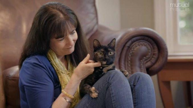 La historia de la gatita que rescató a la madre de su dueña y se volvió viral https://t.co/nDtnPImQHg