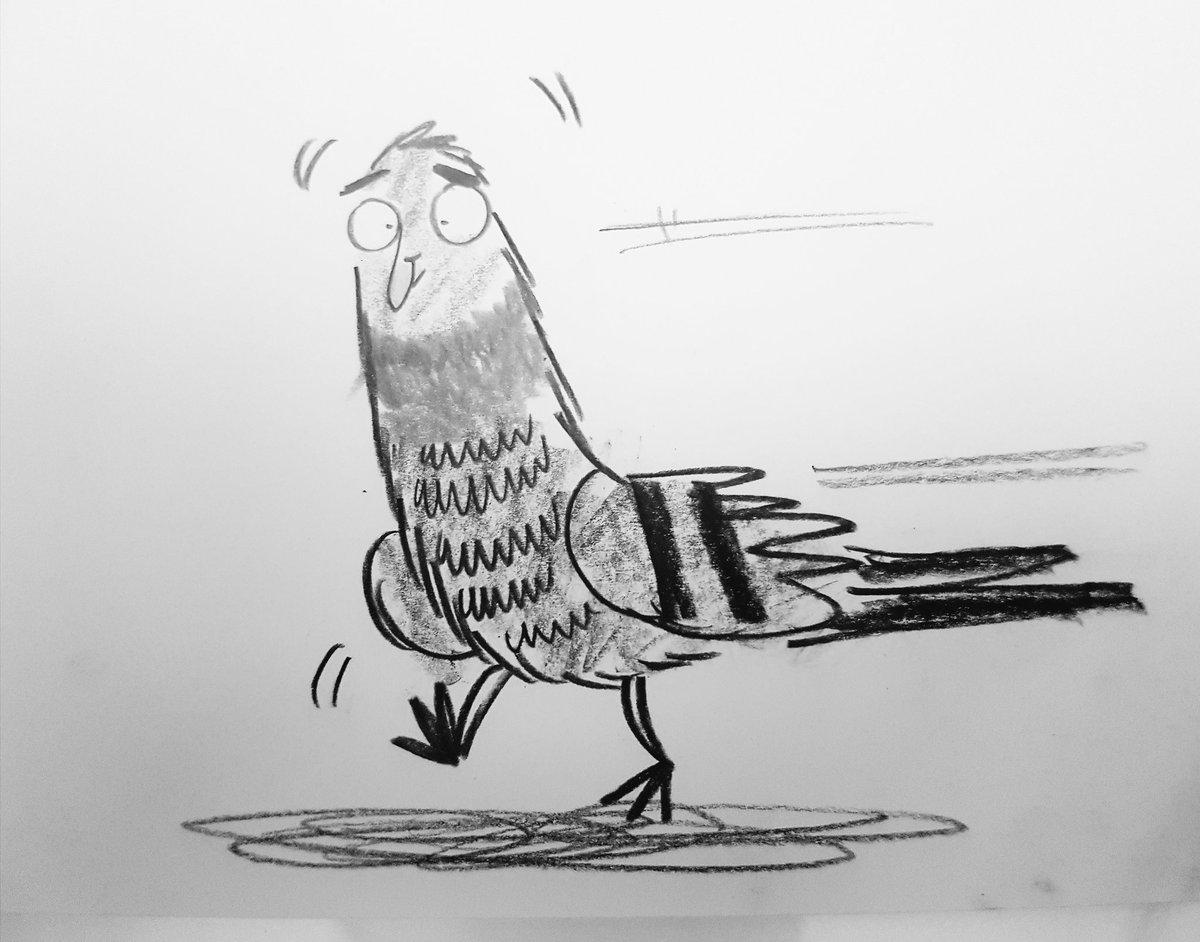Today it was about...#PIGEONS! #illustration #kidlitart #gratitude #childrensillustration #drawing #pigeon #rogue<br>http://pic.twitter.com/veVOjJdoaa