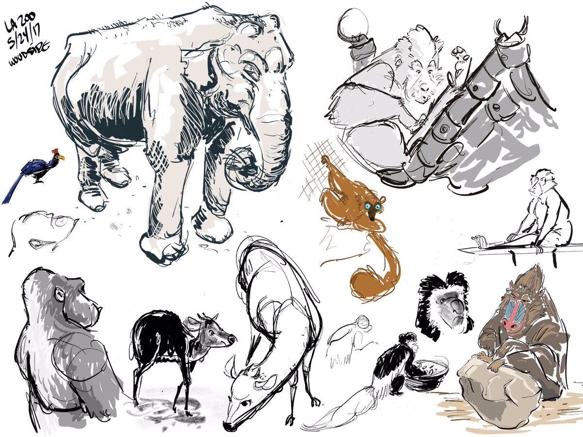 Another Wednesday, another Zoo Day. #drawing #zoosketches @LAZoo<br>http://pic.twitter.com/L3hPZpVqC3