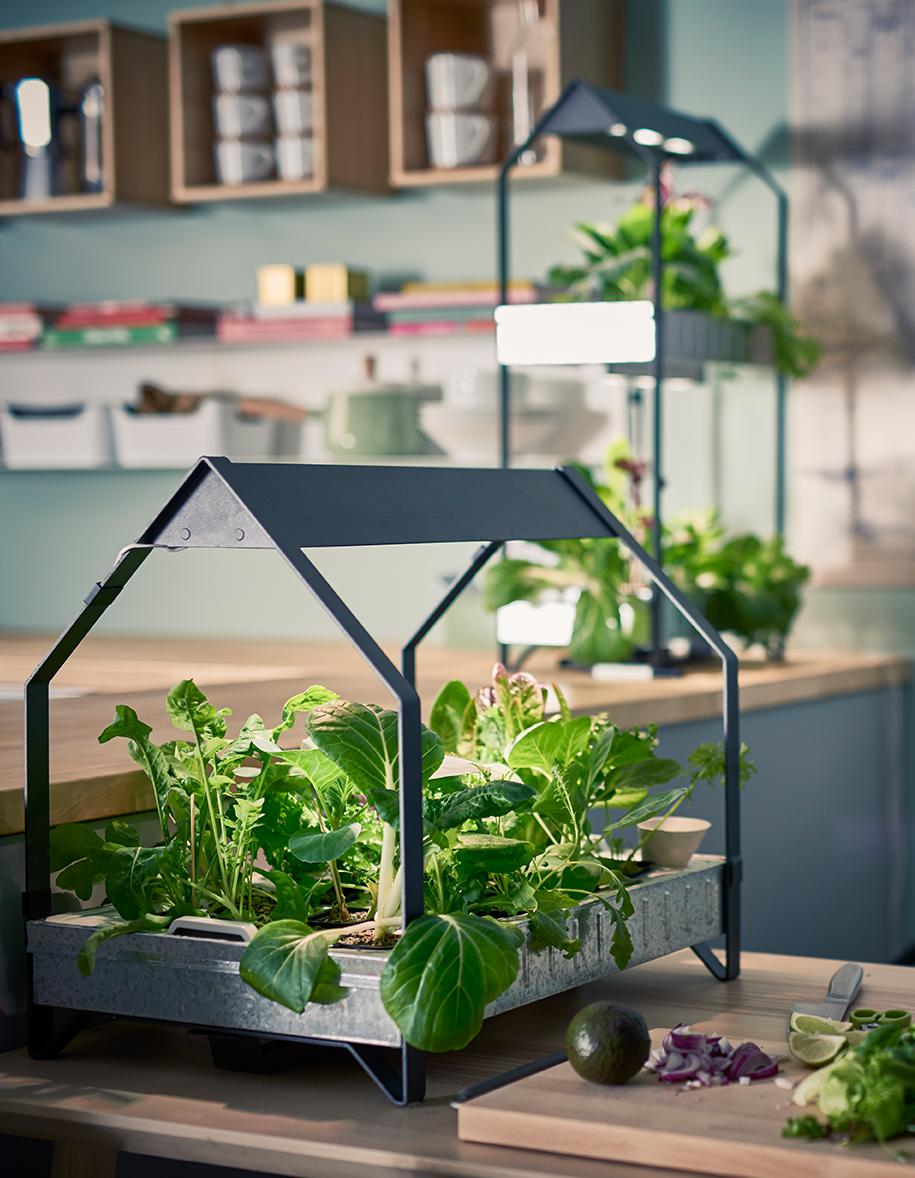 #ELLEatable Voici la méthode Ikea pour faire pousser du basilic dans son salon https://t.co/gpZqUifDaM