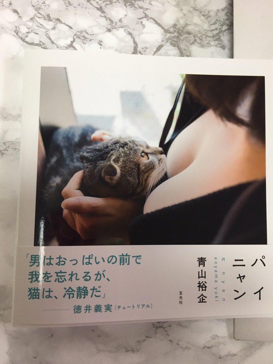 ということで玄光社さんから発売される「パイニャン」というだいぶ攻めてる写真集の見本を頂きました。何か手違いで実家の母に届いてしまったのでまだ中身は見てませんが、おっぱいか猫が好きな方は是非。 https://t.co/fdCNE0t7v3