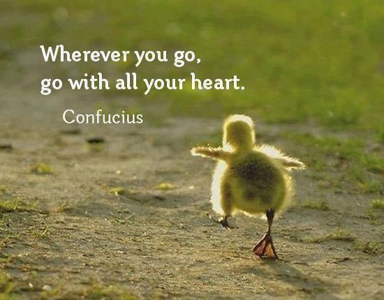 Go with all your heart!   #WednesdayMotivation #Motivation #SmallBiz  #Startup #Entrepreneur #MakeYourOwnLane #defstar5 #Mpgvip #Quotes<br>http://pic.twitter.com/v7Cxpk5ZHW