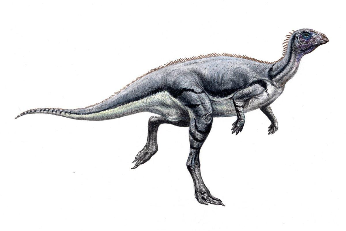 レソトサウルス