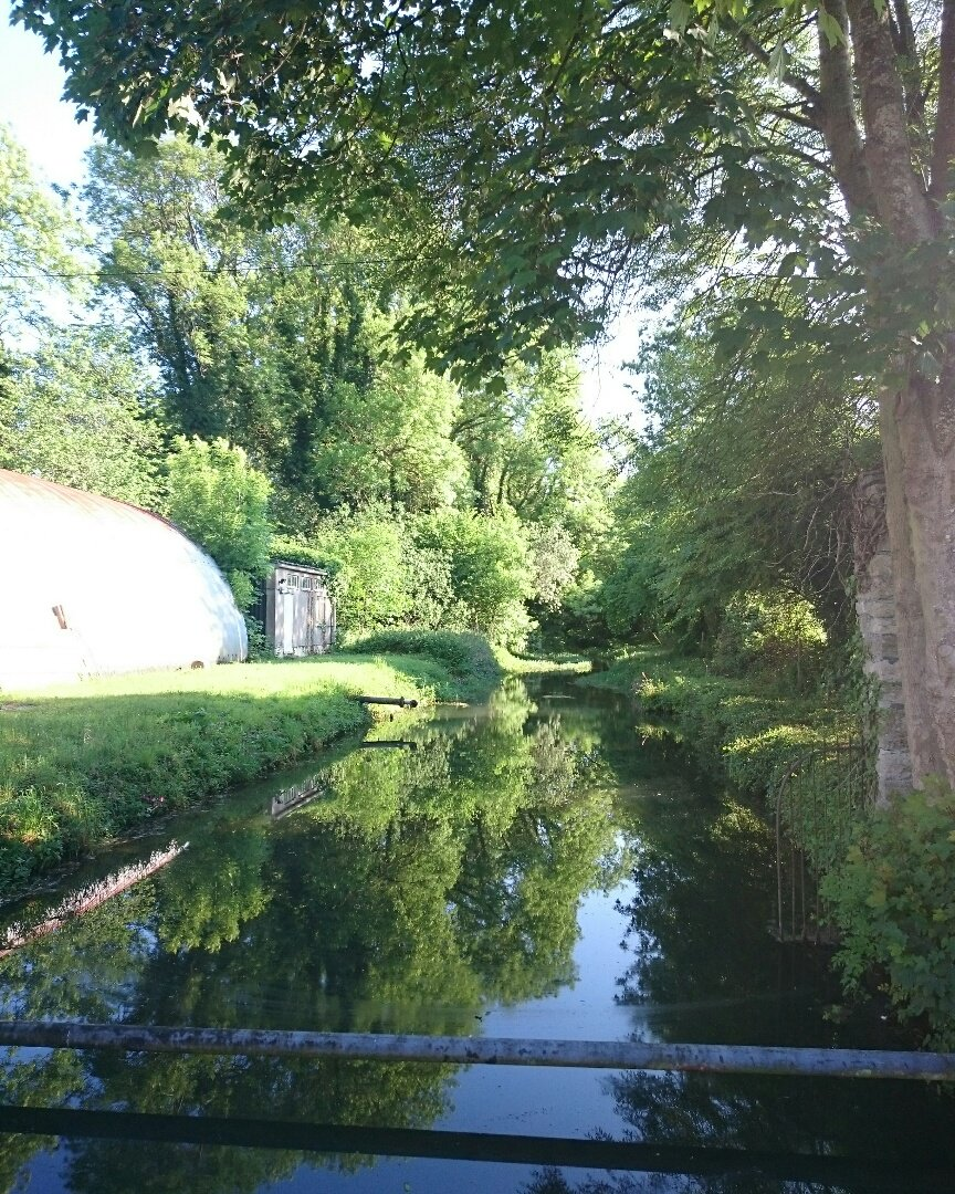 Gorgeous down by the river this morning!  #stcuthbertsmill #papermaking #paper #riveraxe<br>http://pic.twitter.com/dmzc7KfES8