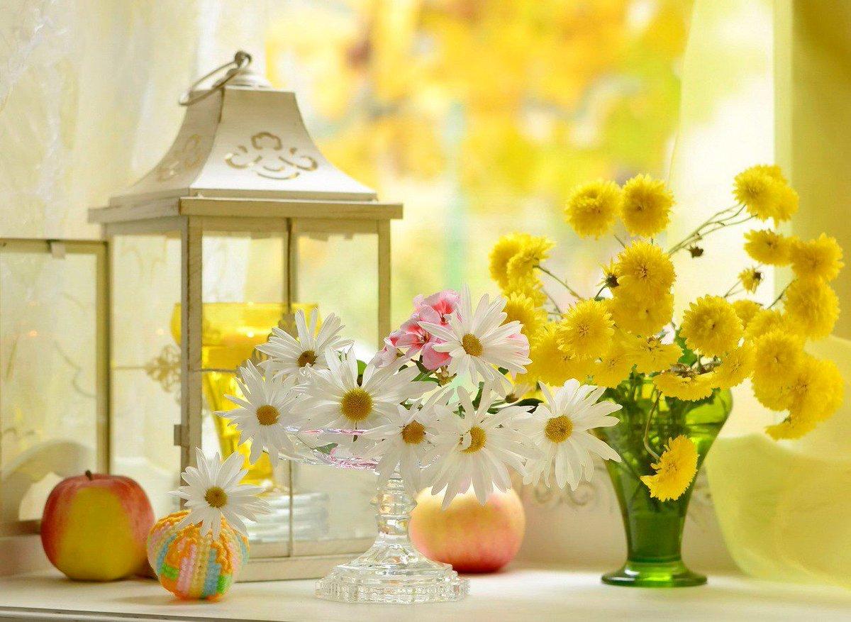 Картинки красивые с добрым утречком солнце цветы