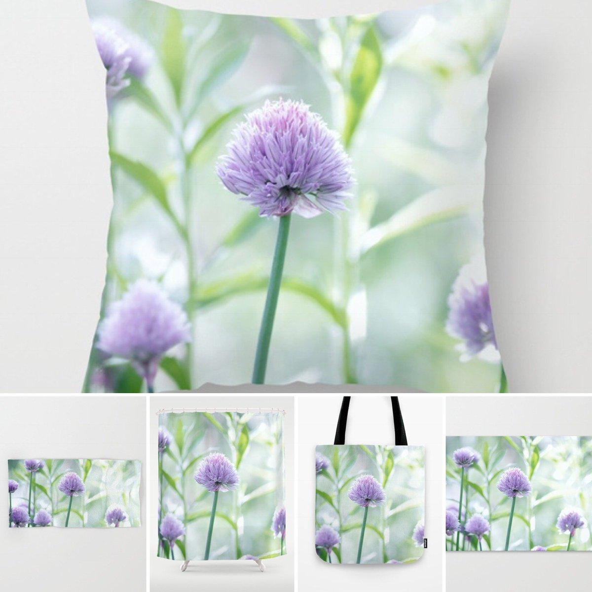 Free shipping off everything today  https:// society6.com/product/garden -nature_pillow?#s6-7070318p26a18v126a25v193 &nbsp; …  #interior #interiores #garten #garden #allium<br>http://pic.twitter.com/jOjrDpLBWP
