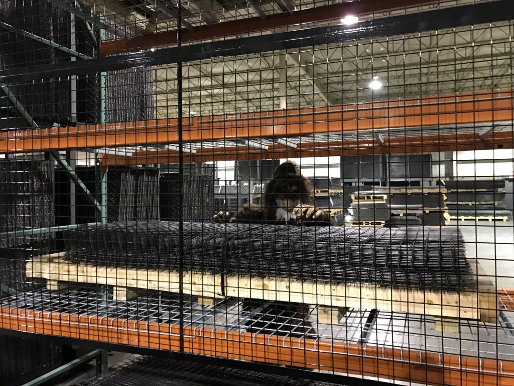 Is that a monster lurking in the warehouse? It&#39;s #BeastWireMesh protecting another set of pallet racking #ThursdayThoughts #Rack #Safety<br>http://pic.twitter.com/x95HMM7AZZ