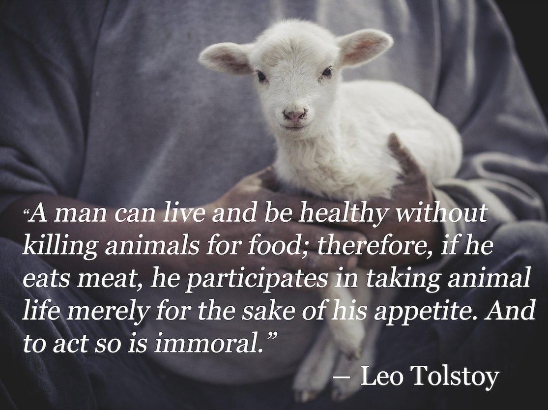 Tolstoy #quote  #vegan life #veggie #green #raw<br>http://pic.twitter.com/Gn6IYKlyHu