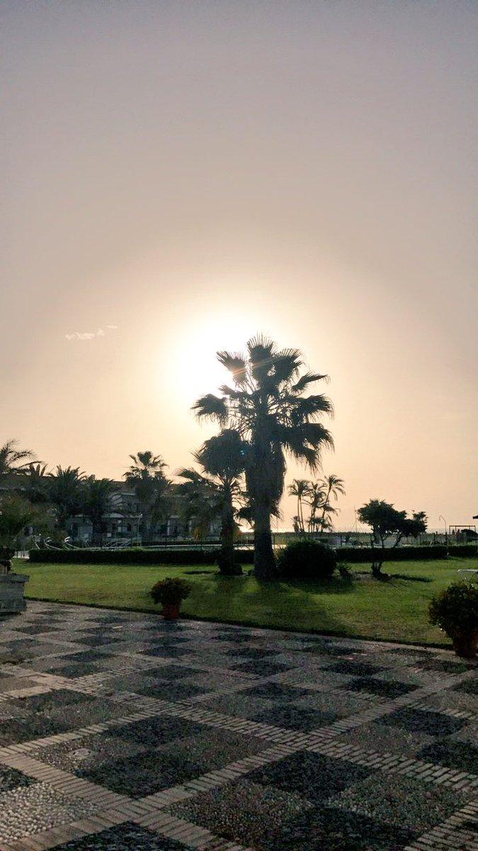 Sunny day #HappyDay  <br>http://pic.twitter.com/DKAWDLihc1