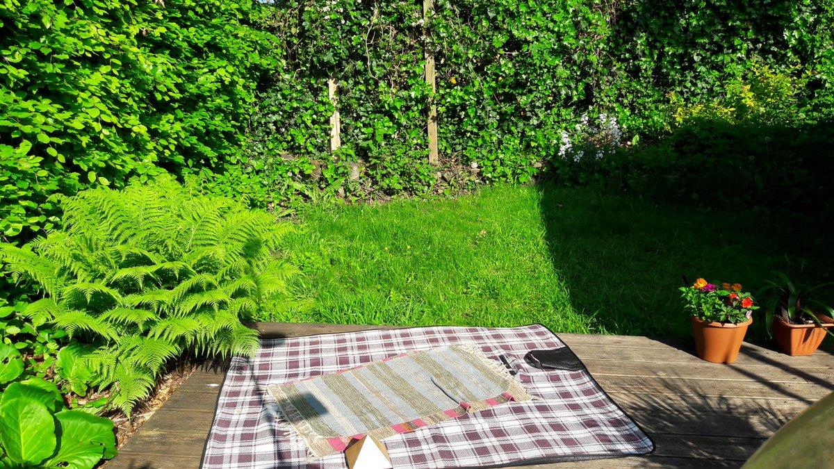 Hello #MaccHour  my #meditation spot this morning before my #yoga class in #Macclesfield #sunnygarden #green #love  http://www. pureyogacheshire.co.uk  &nbsp;  <br>http://pic.twitter.com/0m2akBmpSn