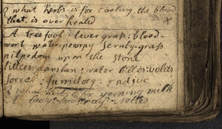 Feeling the heat? Try these herbal remedies for cooling the blood from our C18th herbal notebook #histmed #archives <br>http://pic.twitter.com/SaIcX3dKc8