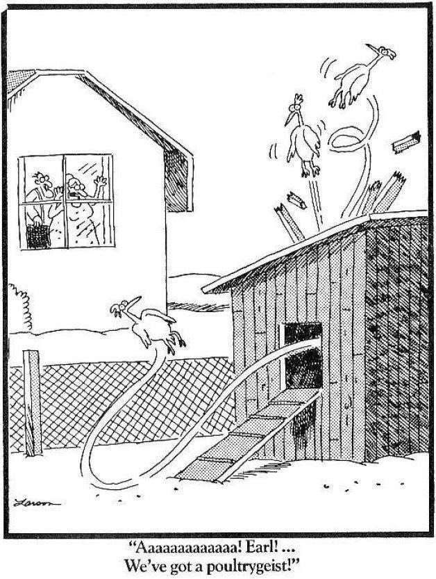 It&#39;s a poultrygeist!?!  #horror #thursdaywisdom<br>http://pic.twitter.com/UPj2j0ZwO8