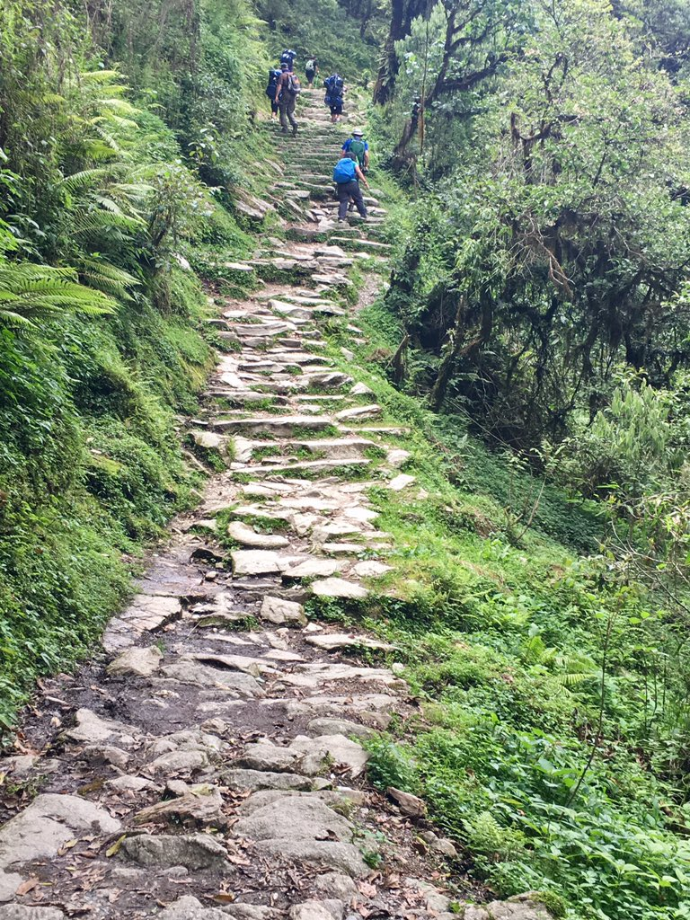 My day was 8 hours of this #Nepal trekking w/ @Claudioula @davestravelpage @timleffel Whatcha up to? #travel #htm2017 #mccooltravel<br>http://pic.twitter.com/qa07ytWLyN