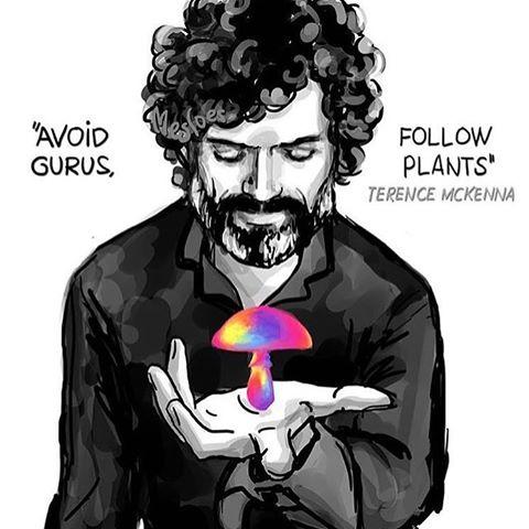 Terence Mckenna Art >> James W Jesso On Twitter Avoid Gurus Follow Plants
