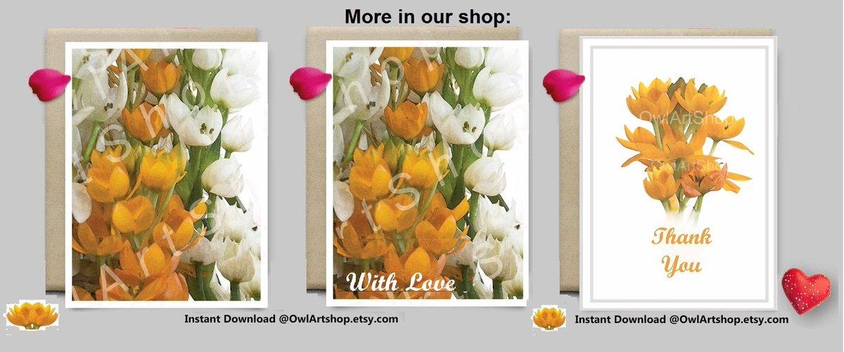 Thank you card Water color flowers #art card  http:// etsy.me/2rlcxBa  &nbsp;   via @Etsy #etsyteamunity #integritytt  #diy @foundinetsy @NightRTs<br>http://pic.twitter.com/o0tBjDEIJ9