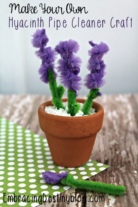 Make Your Own Hyacinth Pipe Cleaner Craft
