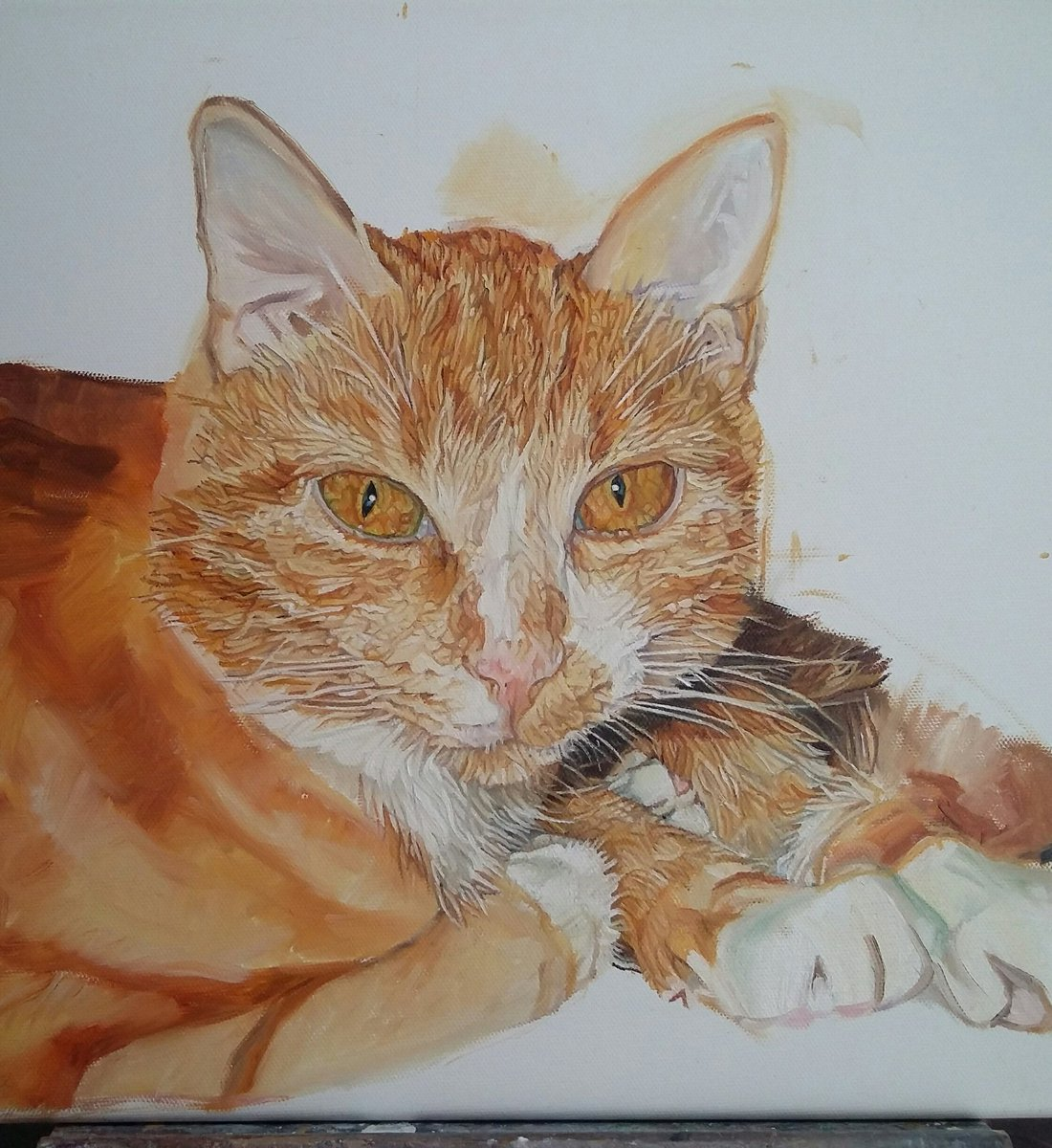 Getting there slowly but surely with thus commission #cat #art #portrait #commission #orderbookopen #QueenOf #animalart #womaninbiz #uksopro<br>http://pic.twitter.com/Bey6UBEV0G