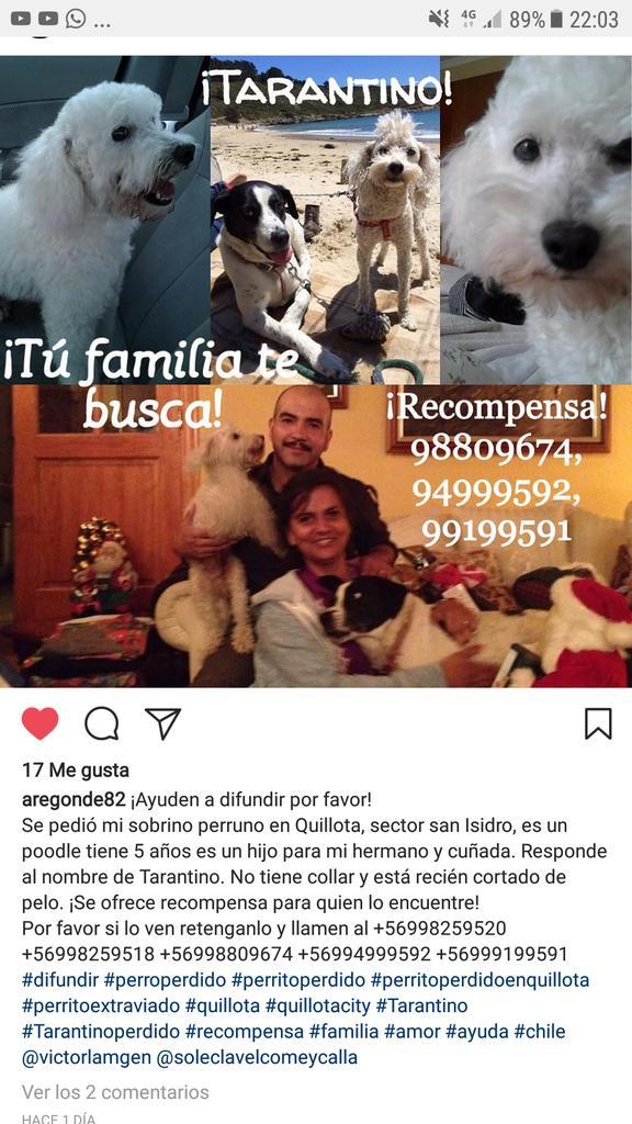 Amigos!!!! Ayudemos a encontrar a este amigo!!! Lo conozco!! Es URGENTE!! https://t.co/ulNEJArd7y