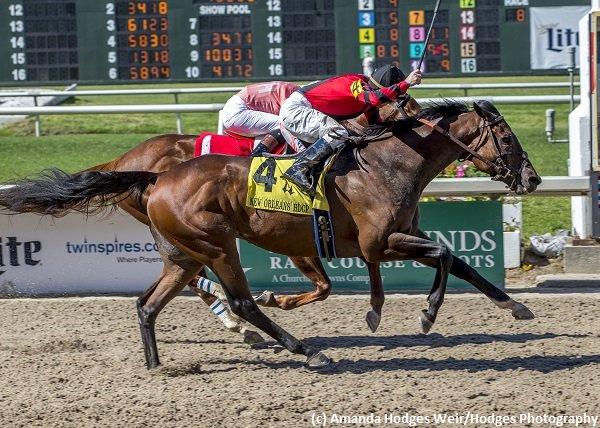 G2 winner #HonorableDuty, 2nd most recently in #Alysheba (G2) on #KentuckyOaksDay, targeting June 17 #StephenFoster H. (G1) @ChurchillDowns<br>http://pic.twitter.com/b96Sdqo7lO