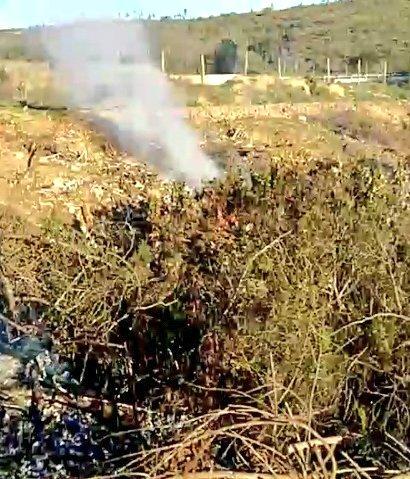 RT @SanAntonio_SOS @Emerg_V_region @If_vregion #Cartagena: Informe 10-2, Se trato de Mediana Extensión de Pastizal/desecho de eucaliptus, controlado. Palma 11-1 en el lugar @If_vregion