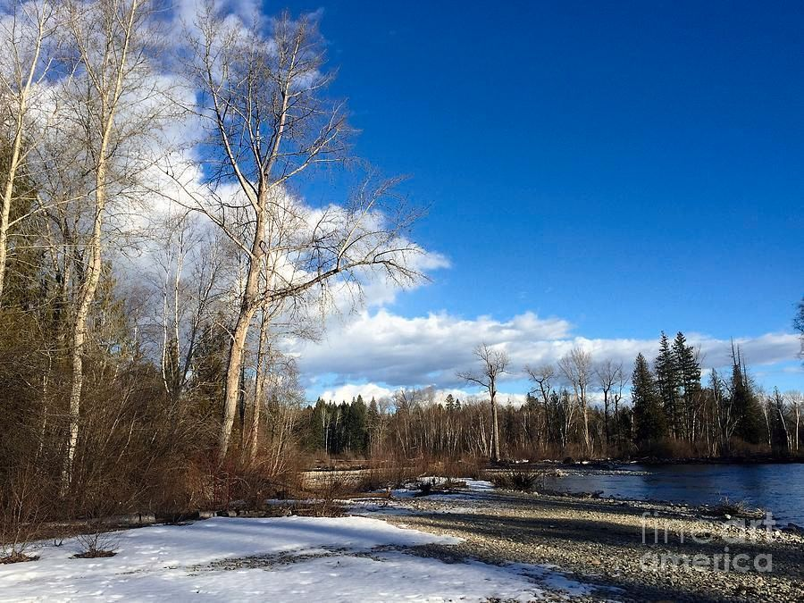 Adams River by Victor K  http:// buff.ly/2rTaXqe  &nbsp;   #Moody #landscape #quietness  #fineart #romantic #river #snow #winter #outdoor #trees<br>http://pic.twitter.com/pep9IqEbnC